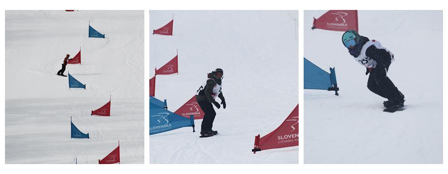Snowboardingové disciplínyFreecarve